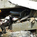 Gempa M 7,0 Guncang Sulut, Polisi Sebut Tak Ada Korban Jiwa